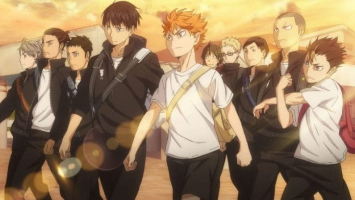 Team der Karasuno High aus Haikyu!!